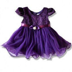 Cutesy Embroidered Purple Little Girls Party Dress